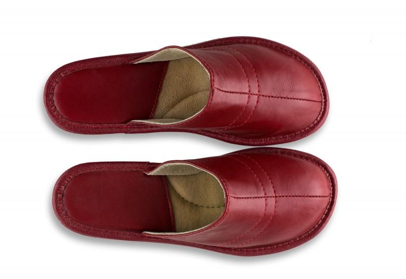 Tango slippers No.10