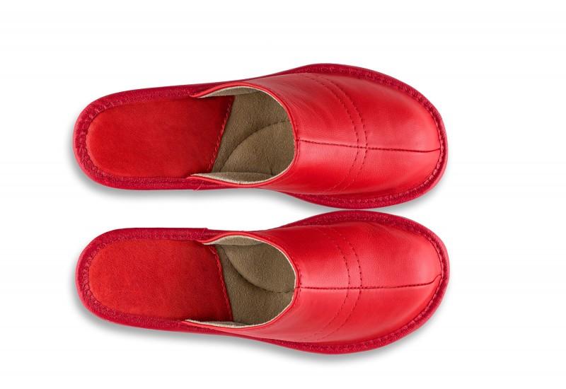 Tango slippers No.9