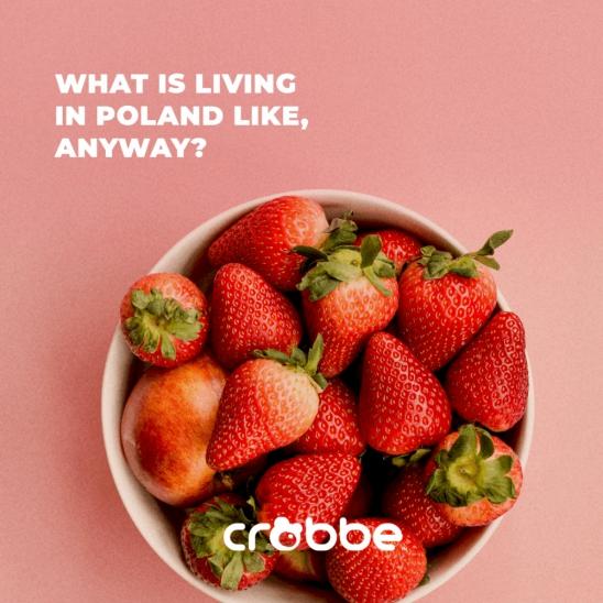 Jak właściwie żyje się w tej Polsce?